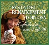 Banner de la Festa del Renaixement I